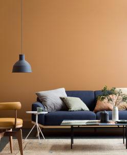 Gentil Interior Color Trends 2018