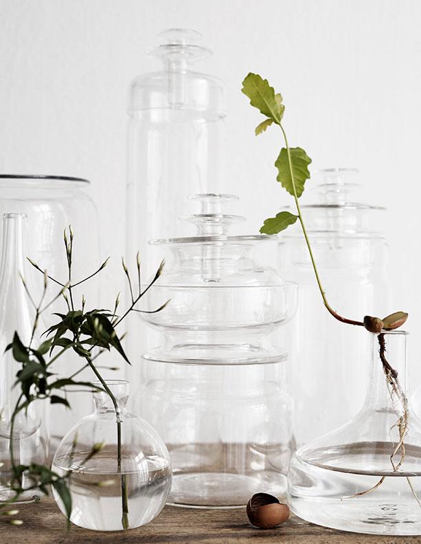 rooting plants in water, glass vases trend, green trend, italianbark interior design blog