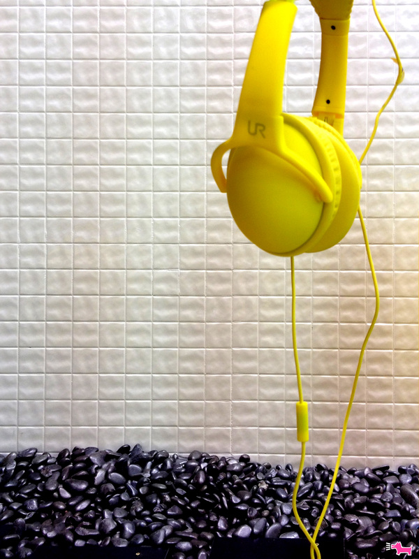 gibus @italianbark #yellow