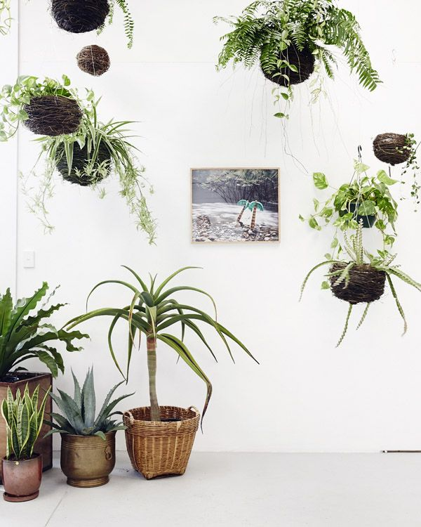 summer-2015-interiortrends-italianbark-succulents