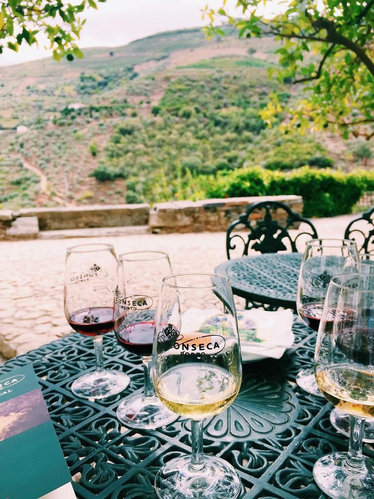 ALTO DOURO WINE REGION - PORTO