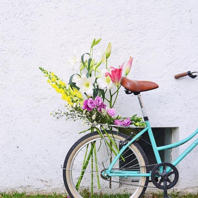 BEST-INSTAGRAM-FLOWERS-springoninstagram-designtime-italianbark-interiordesignblog (24)