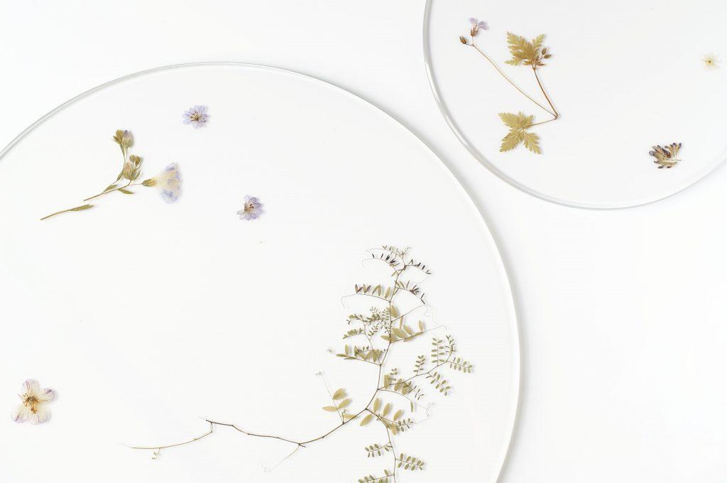 evergreen-platters-meike-harde05