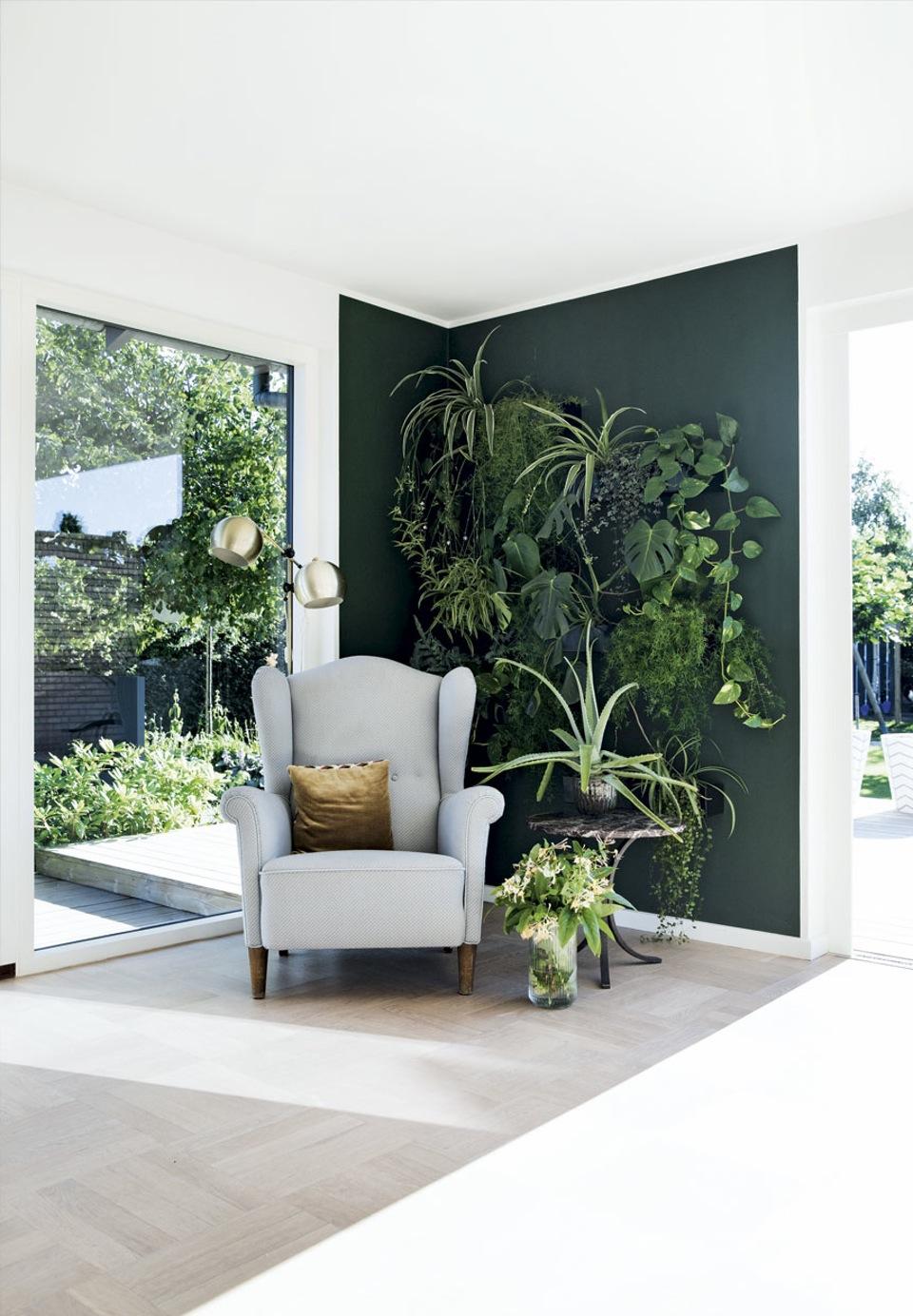 botanisk-hjorne-laenestol-planter-7UUNMCE7APGmpb7cev6KPg