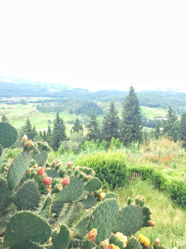 toscana, castelfalfi, resort toscana, tuscany interiors, italian interiors, tuscany style, toscana country