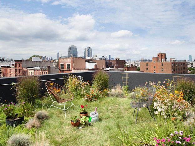 garden-rooftop-6