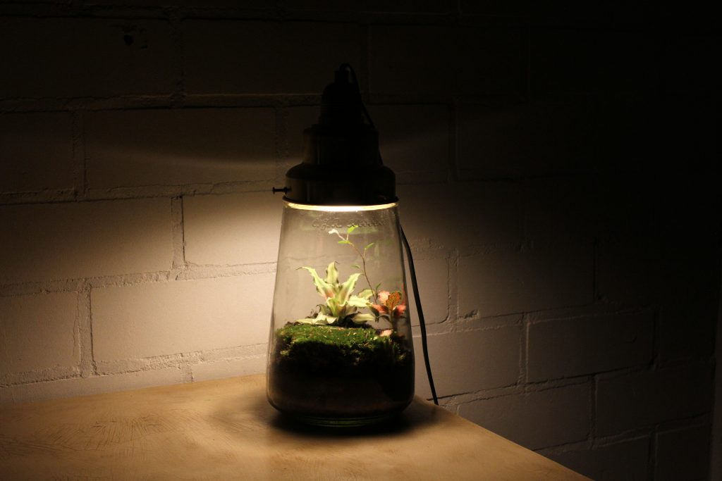 vintagelamp-seventieslamp-greendesign-spruitje-italianbark-58