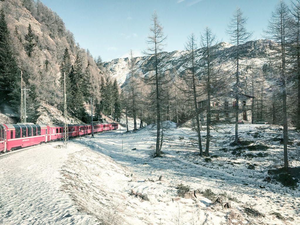 trenino rosso bernina, bernina express, italianbark