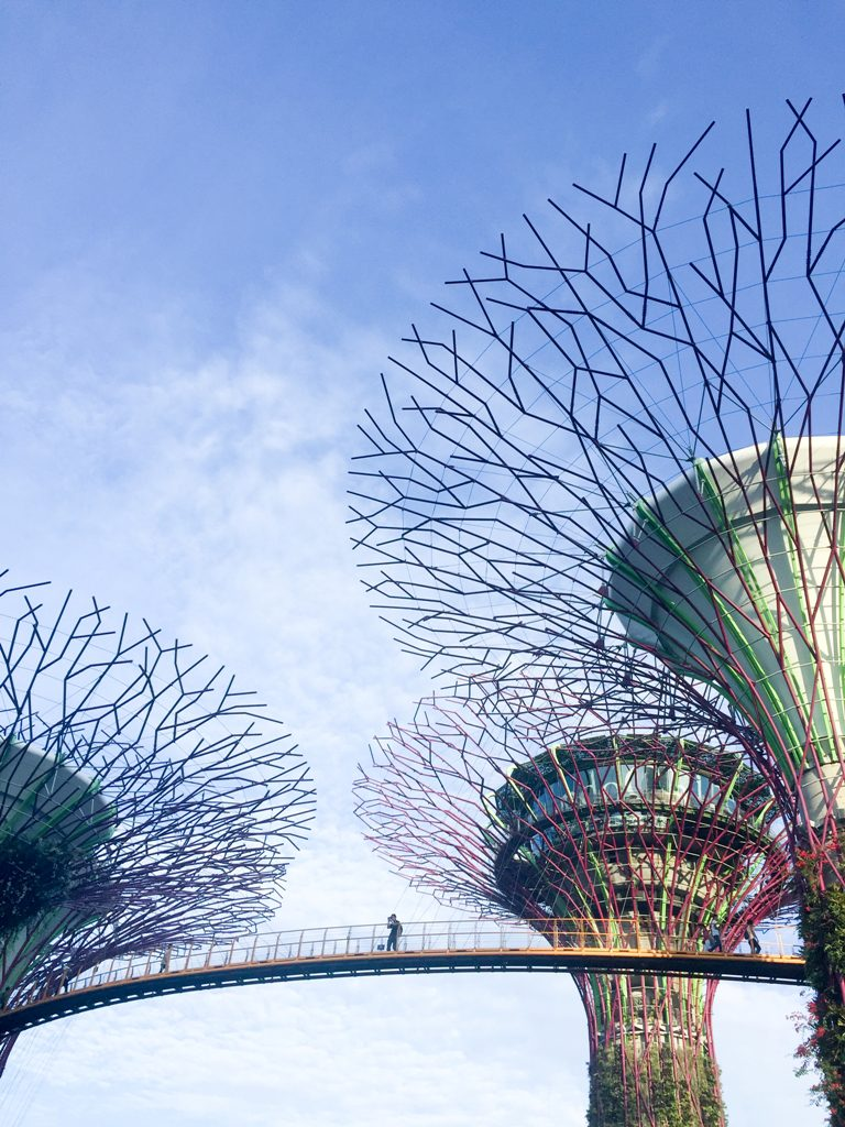 visit singapore, reasons visit singapore, travel singapore, italianbark interior design blog, gardens by the bay