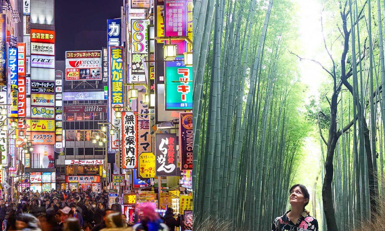 10 days japan, tokyo kyoto travel, italianbark