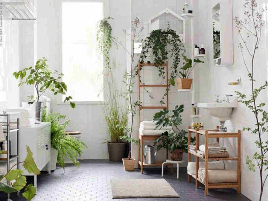 best bathroom plants wet rooms plants green bathroom design italianbark interior design blog - Bathroom Plants