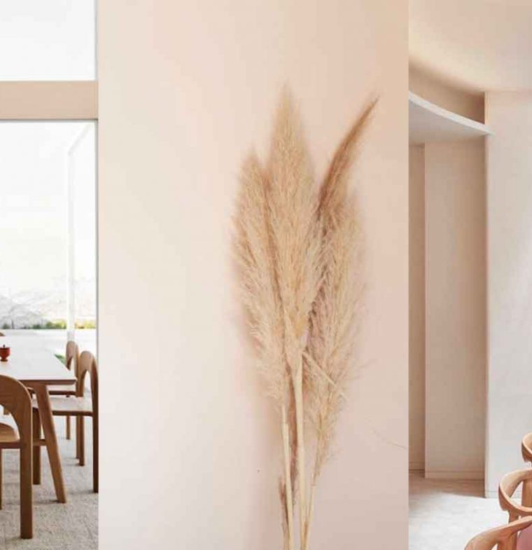 Protected: COLOR OF THE MONTH | Nude Color Trend with Seashell White – full