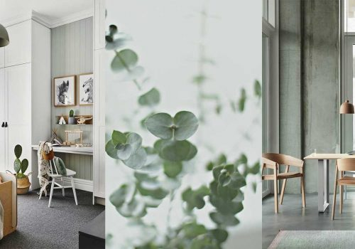 COLOR OF THE MONTH | Rejuvenating and invigorating with Eucalyptus Green – part 1