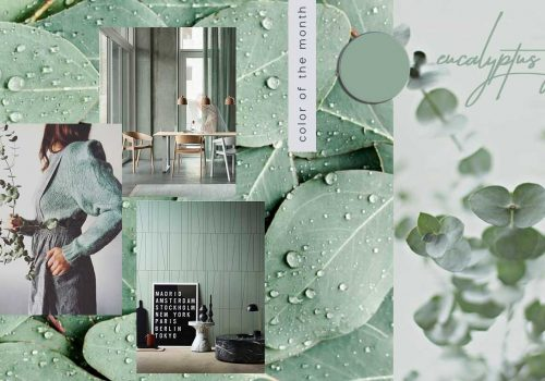 Protected: COLOR OF THE MONTH | Rejuvenating and invigorating with Eucalyptus Green – full