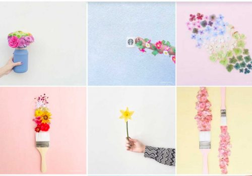 INSTAGRAM TIPS | Best Flowers on Instagram to be inspired this Spring