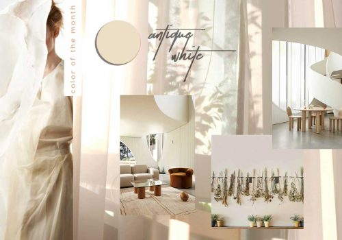 Protected: COLOR OF THE MONTH | Timeless Antique White – full