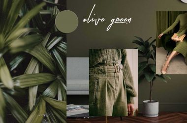 COLOR OF THE MONTH | Olive Green Color Trend